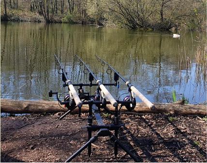 Cobbleacre Lakes Fishing